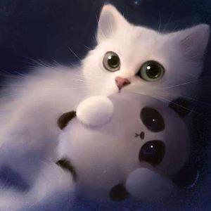 猫君不卖萌