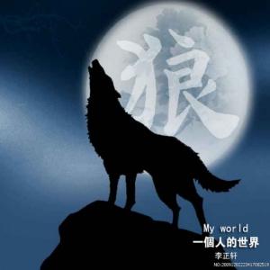 .离群的狼