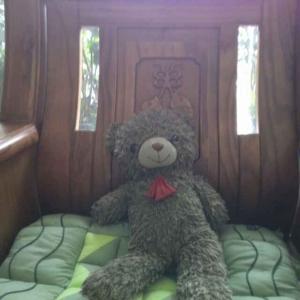 窗台上的泰迪熊