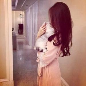 ぁ尐懒猫お