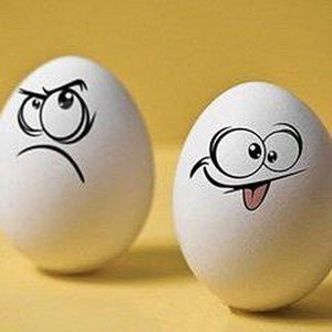蛋蛋君带你看视频