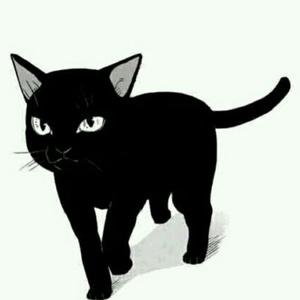 苏二曦的黑猫警长Piu