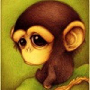 小猴喵喵叫