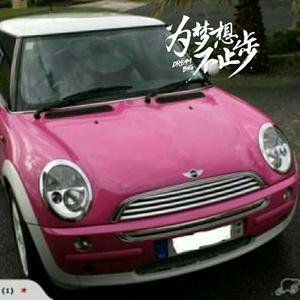 粉红的小车车