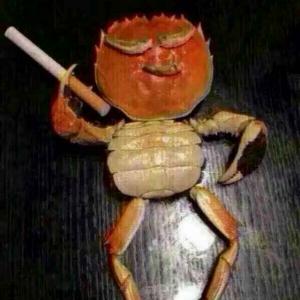 螃蟹横着爬。