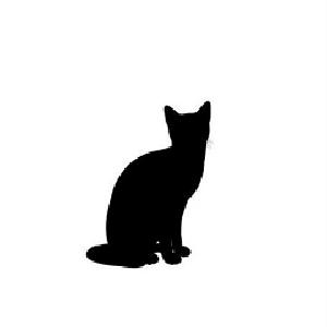 有只猫电影