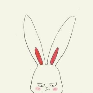 小兔子不乖乖哈