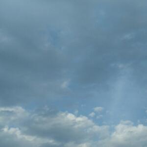 云上高人飞