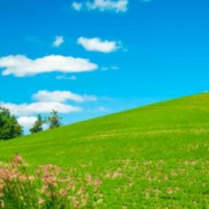 风从草原来