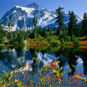 和谐大自然