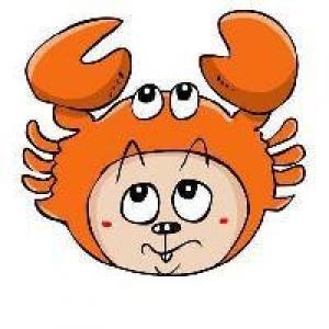 巨蟹座兔子