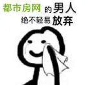 都市房网~刘又源