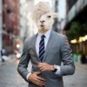 迷途的羔羊。
