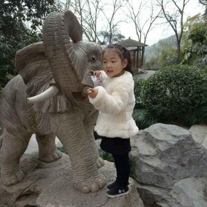 龙猫vs魔蝎