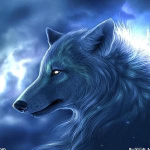 狼性--军团