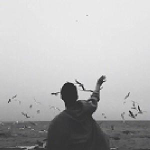 ?被遗忘、の寂寞