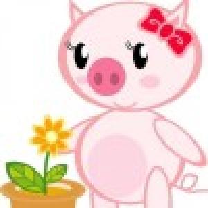 爱吃爱睡的猪