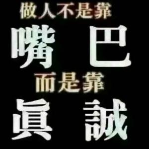济宁法桐.白蜡基地