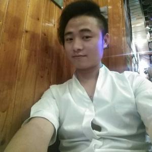 lei zhi jun